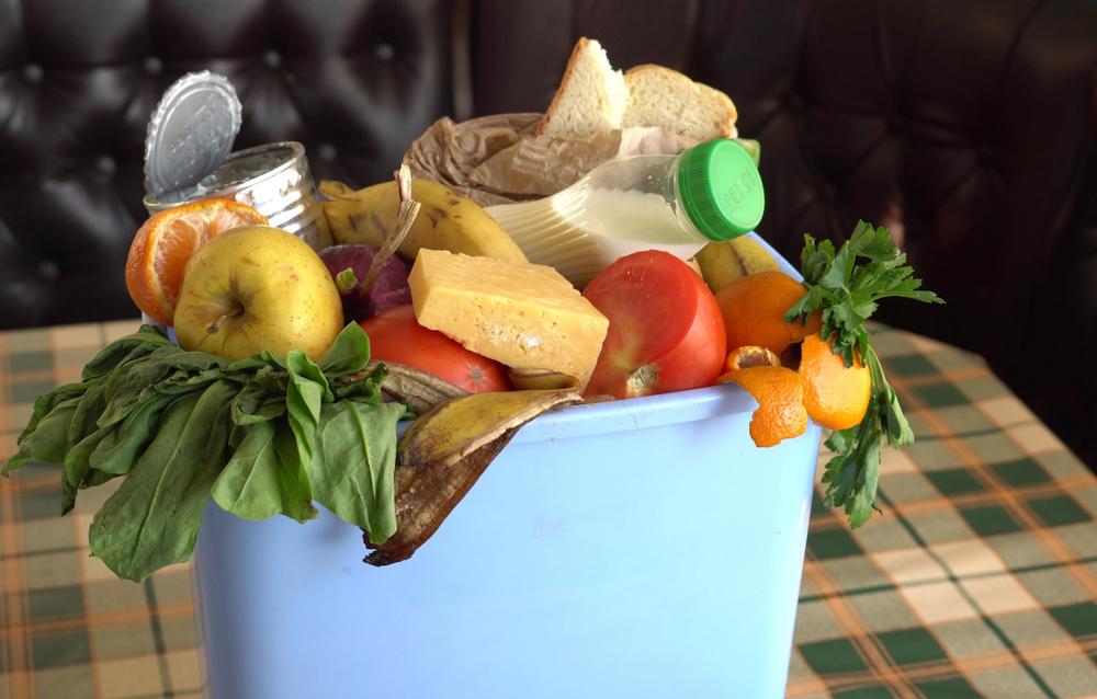 Desperdício de alimentos: do problema à oportunidade